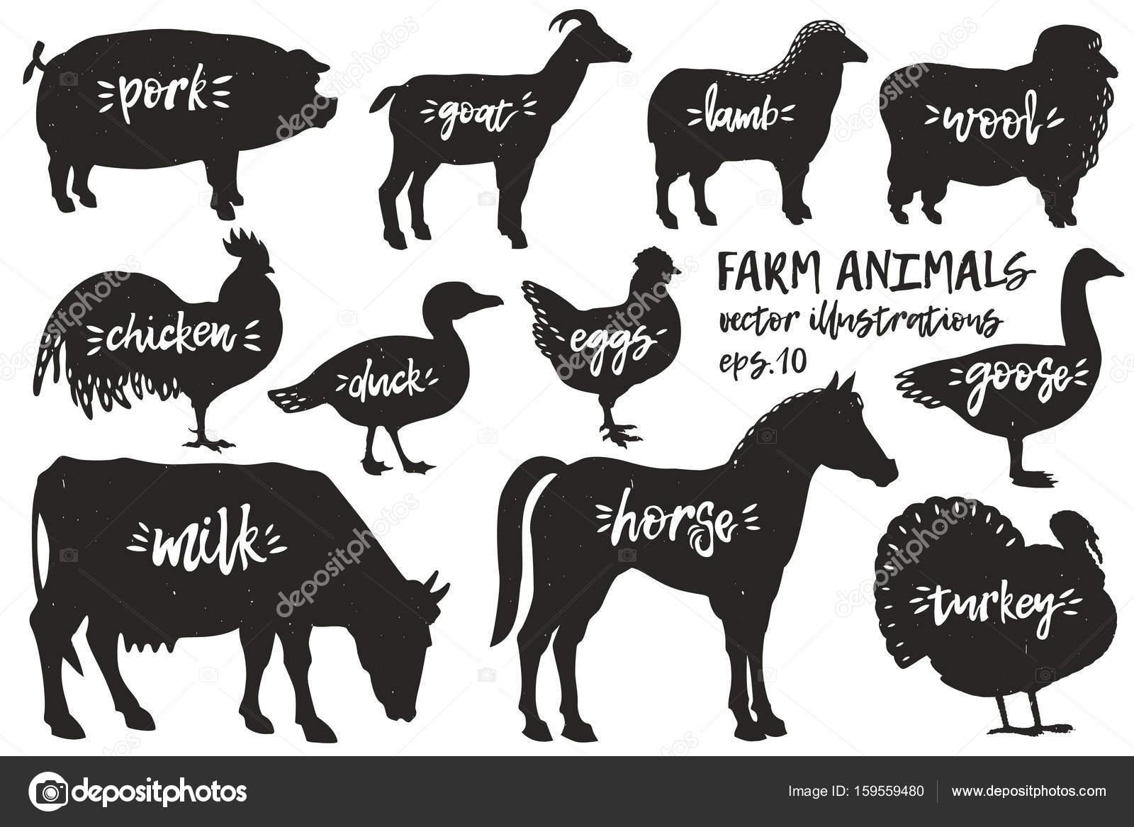 Vector farm animals silhouettes. Vintage illustrations. Hand