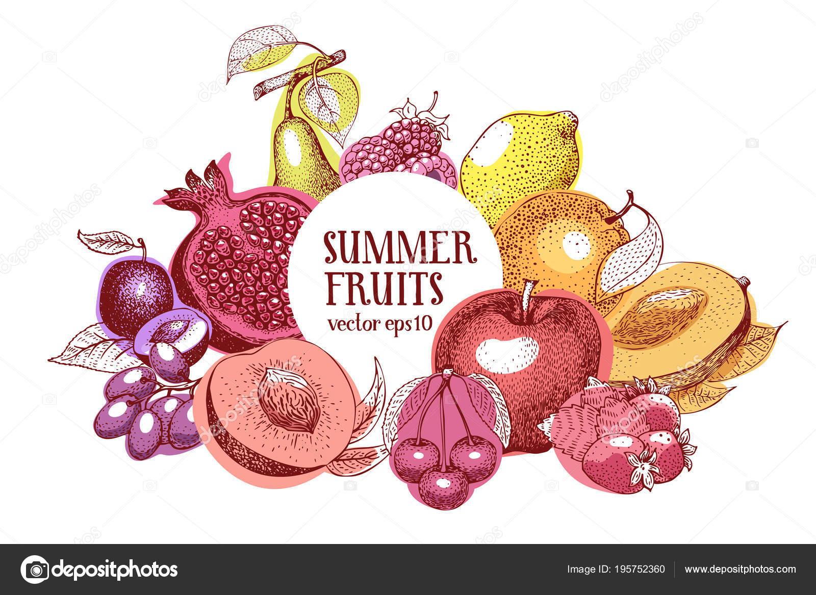 Marco vector dibujado a mano frutas. Plantilla de la bandera. Fondo ...