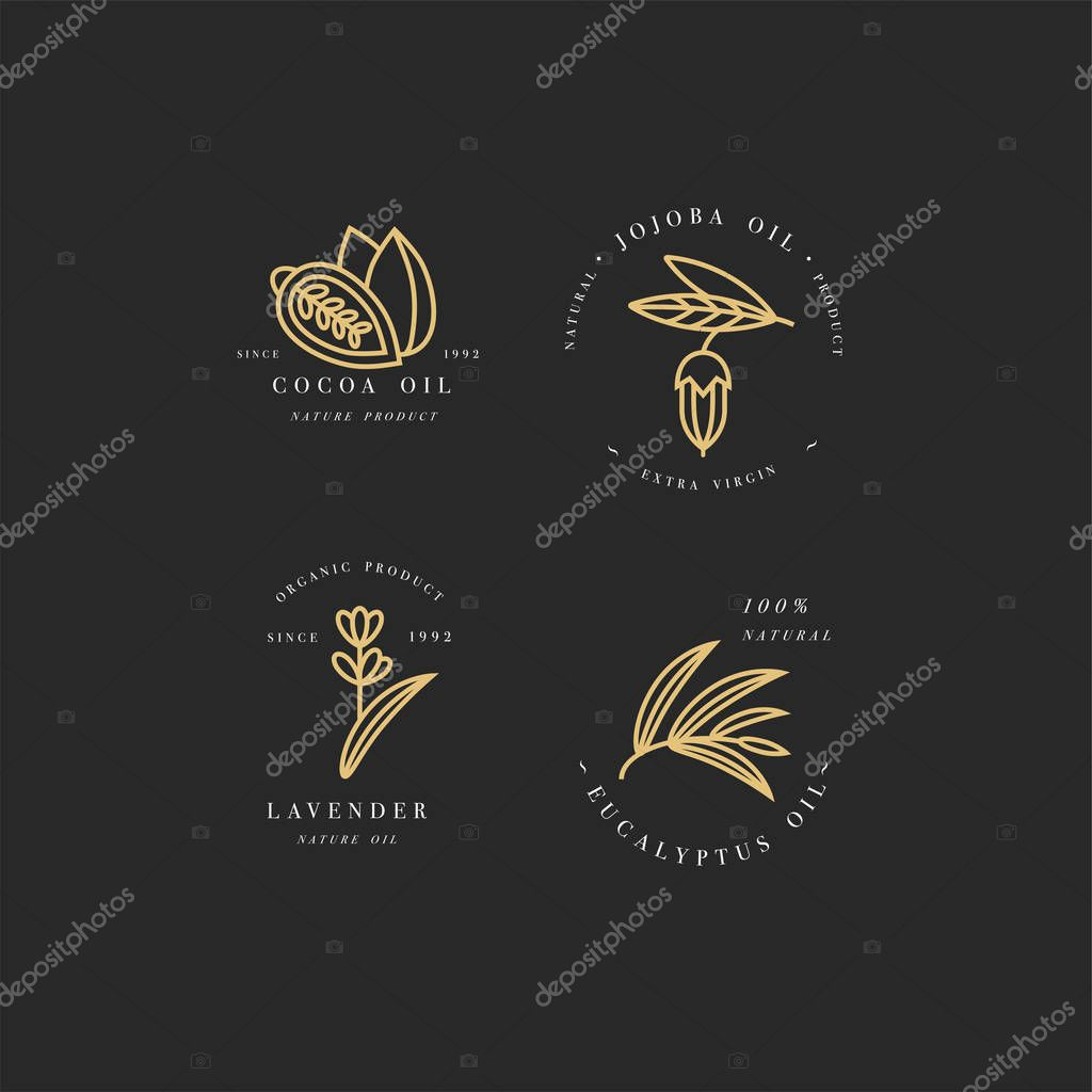 Vector set of packaging design templates and emblems - beauty and cosmetics oils - cocoa, lavender, jojoba and eucalyptus