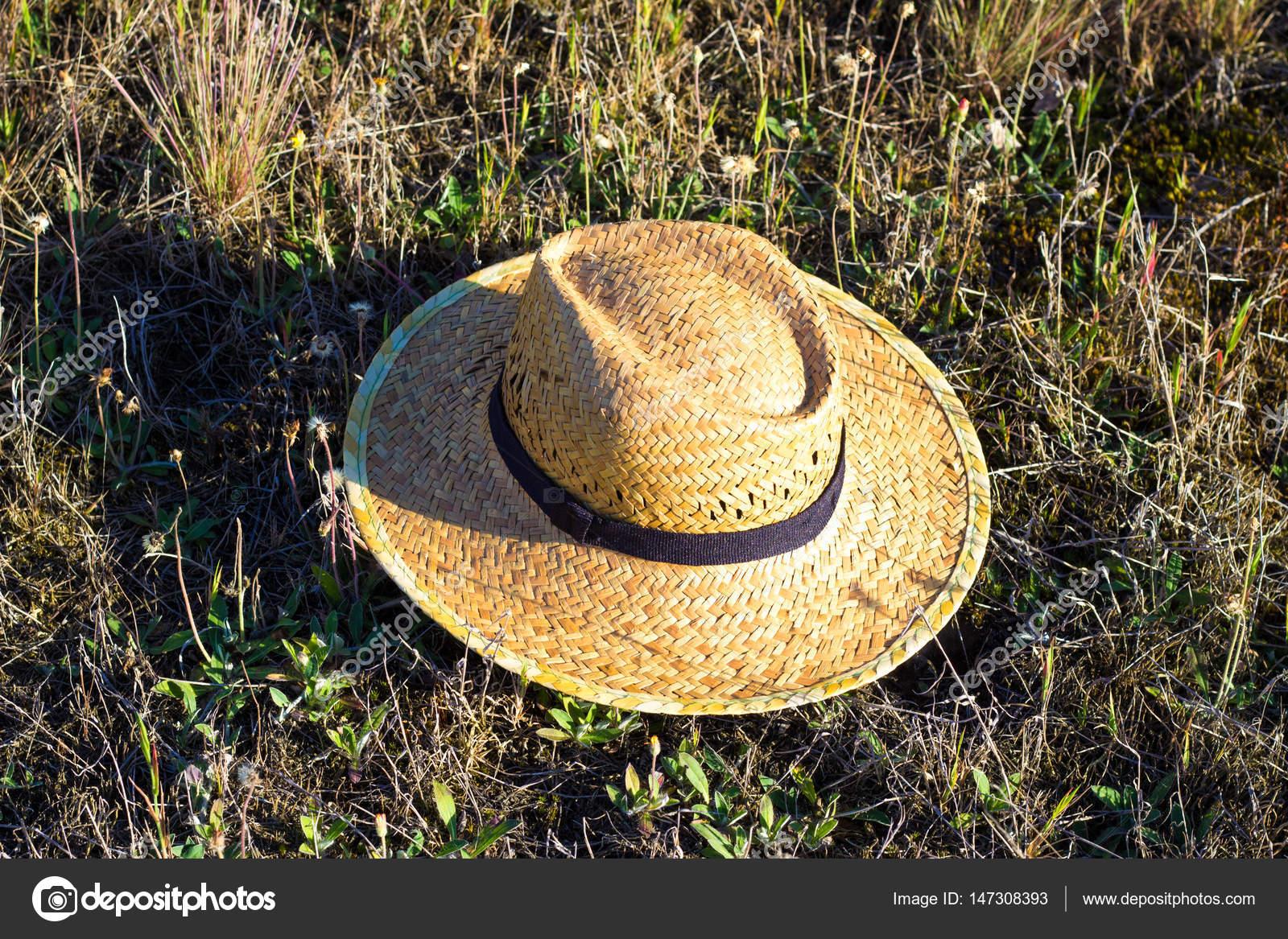 Cappello di paglia di tessuto giallo semplice contadino sulla composizione  di erba verde– immagine stock 1aa8ac2afa80