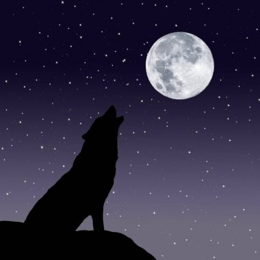 Howling wolf with the full moon in a starry night