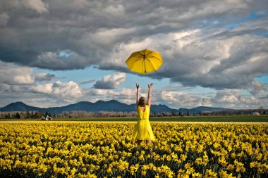 Happy woman in daffodil field with yellow umbrella.