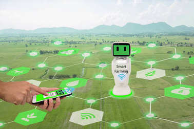 iot, internet of things,agriculture concept.Farmer use mobile phone connect Smart Robotic (artificial intelligence,ai) use for management , control , monitoring, and detect with the sensor in the farm