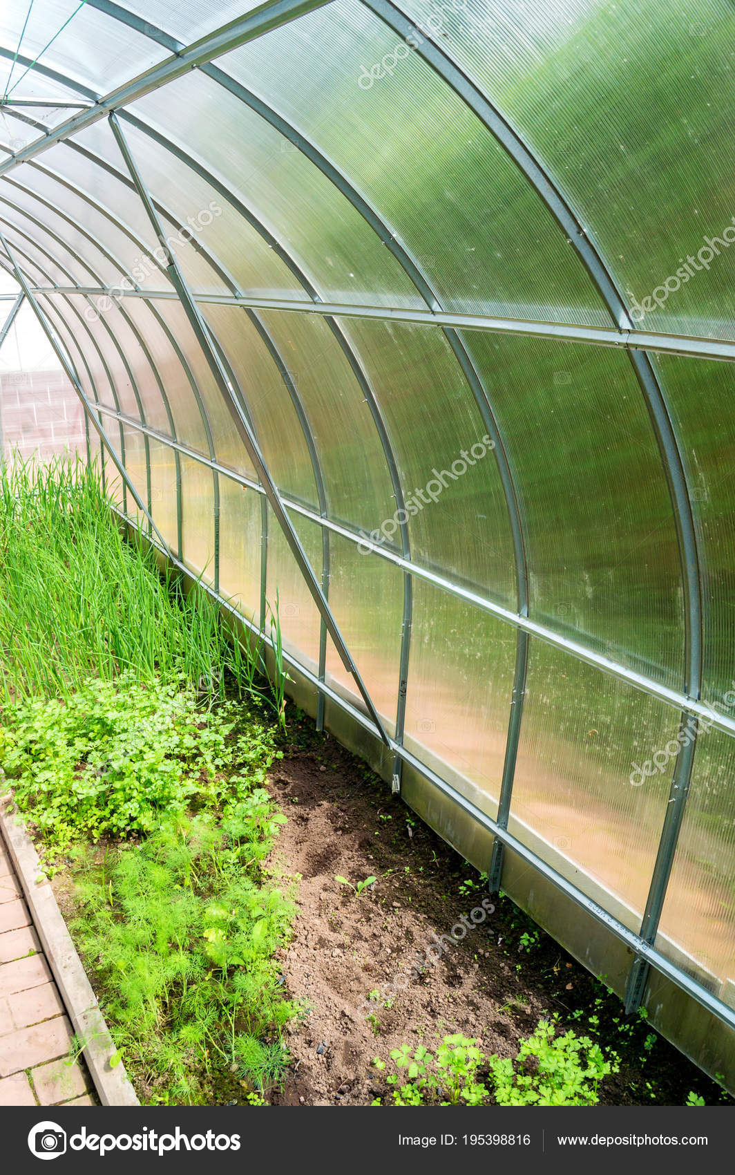 Admirable Inside Small Garden Greenhouse Stock Photo C Greentellect Home Interior And Landscaping Ologienasavecom
