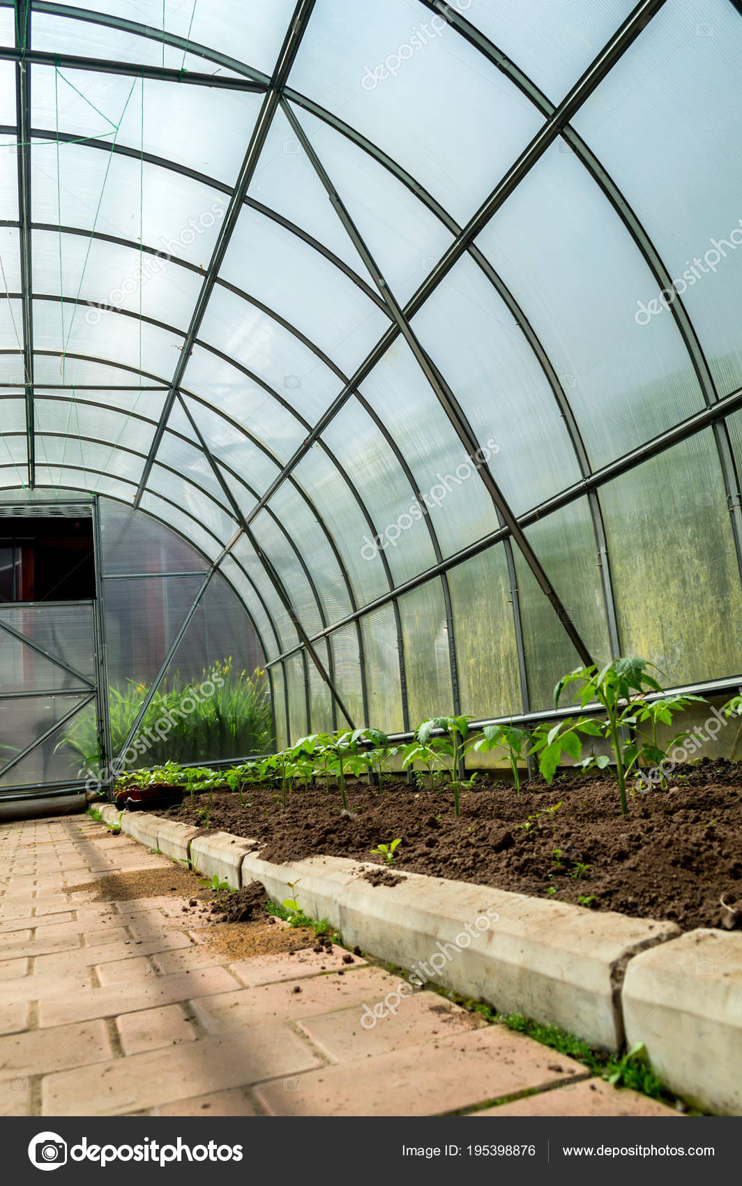 L\'intérieur petite serre jardin — Photographie Greentellect © #195398876