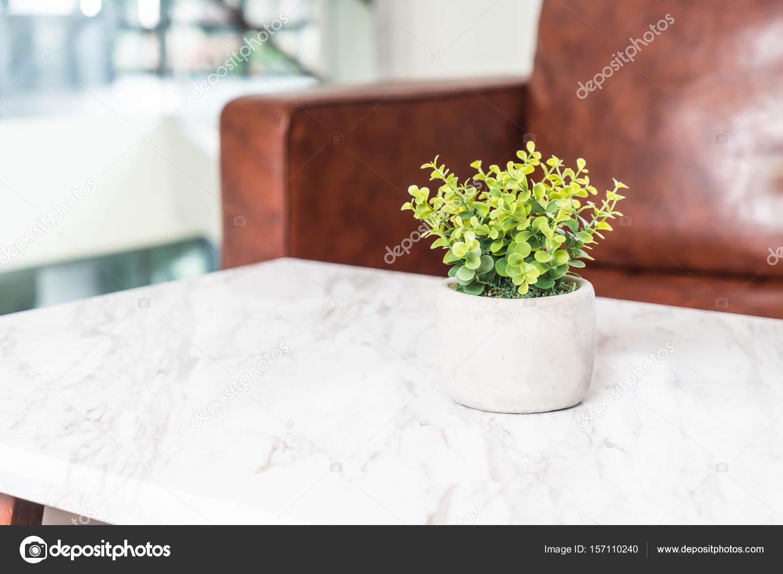 Baum Im Topf Dekoration Auf Dem Tisch Im Wohnzimmer Stockfoto