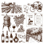 Traditional vinery production hand drawn