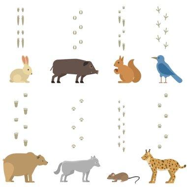 Animals steps vector set.