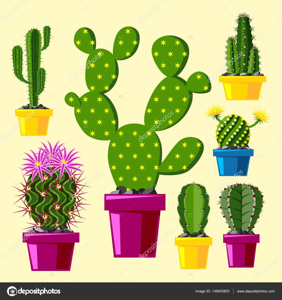 Cactus flat style nature desert flower green cartoon drawing graphic ...