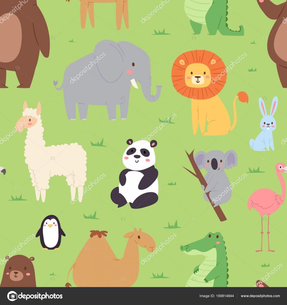 Dibujos Animados Animales Fauna Fondos Zoo Salvaje