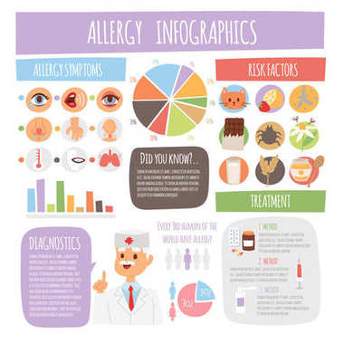 Allergy infographics symptoms information treatment medicine vector illustration