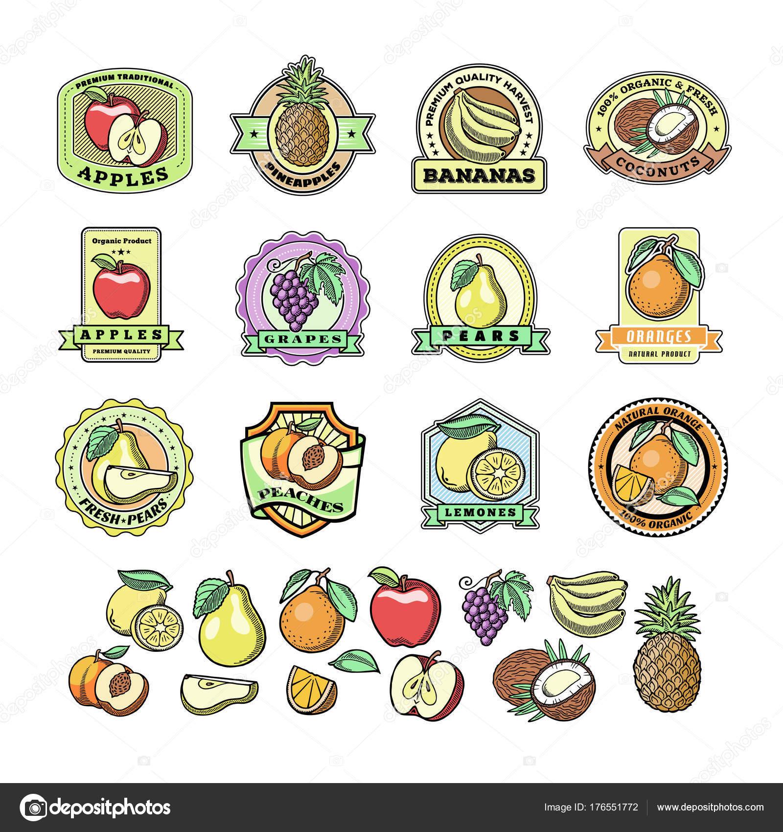 Fruta de identificación etiquetas de plantillas con muestra texto ...