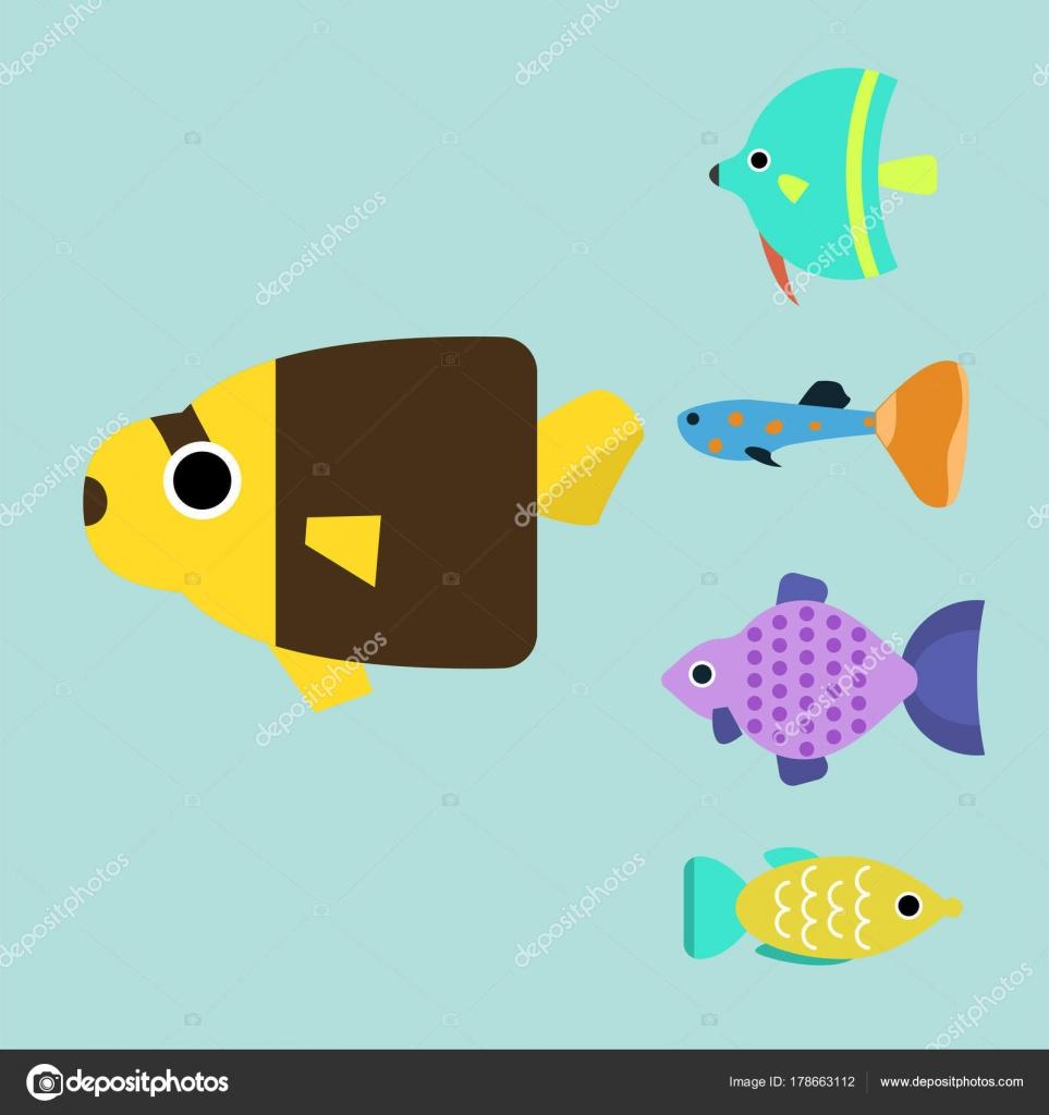 Exotische tropische Fische Rennen andere Rasse Farben Unterwasser ...