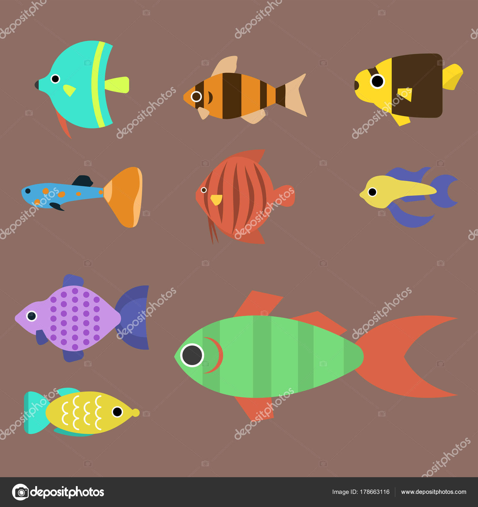 Exotic tropical fish race different breed colors underwater ocean ...