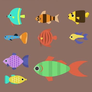 Exotic tropical fish race different breed colors underwater ocean species aquatic strain nature flat vector illustration.