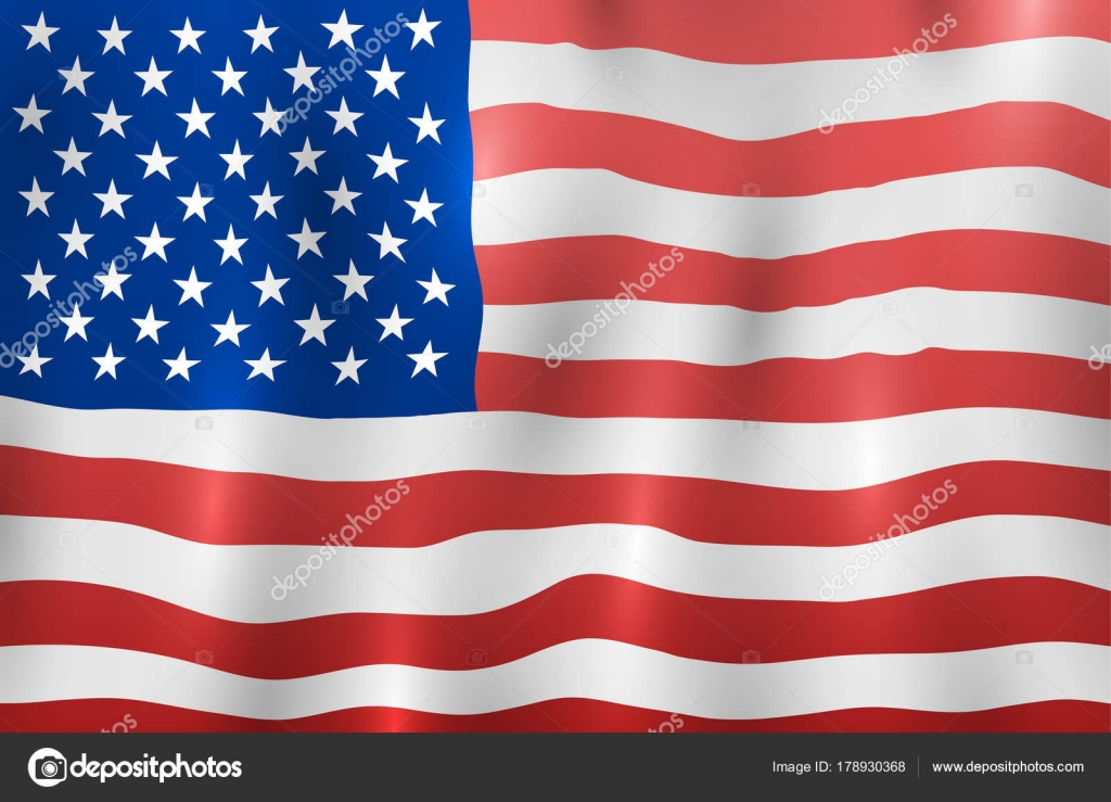 Usa Flag United States American Freedom National Sign Vector
