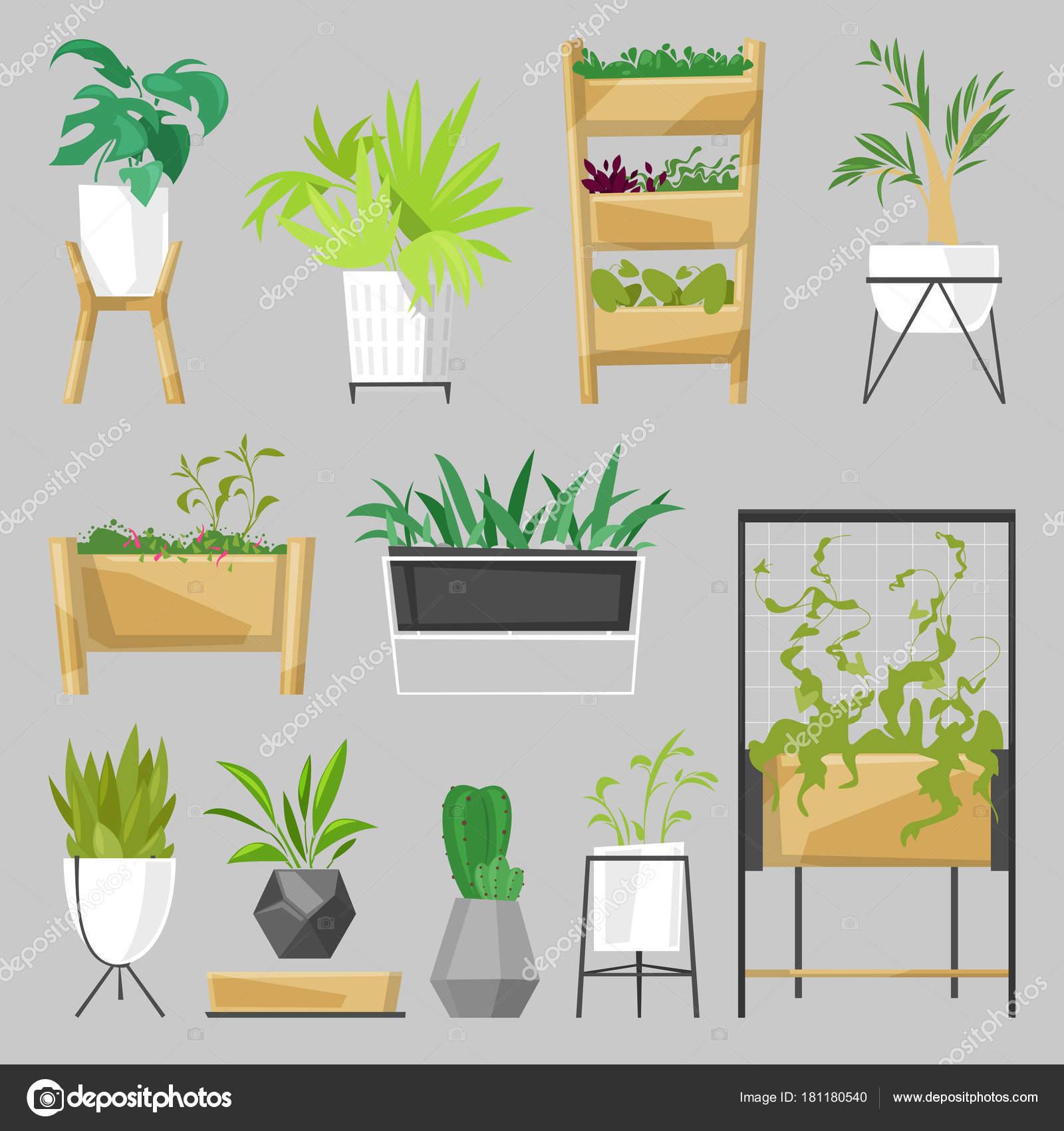 Piante In Vasi Da Fiori Vector Aloe Coperta Botanico Cactus Piante  Du0027appartamento In Vaso Per La Decorazione Della Casa Con La Collezione  Floreale Del ...