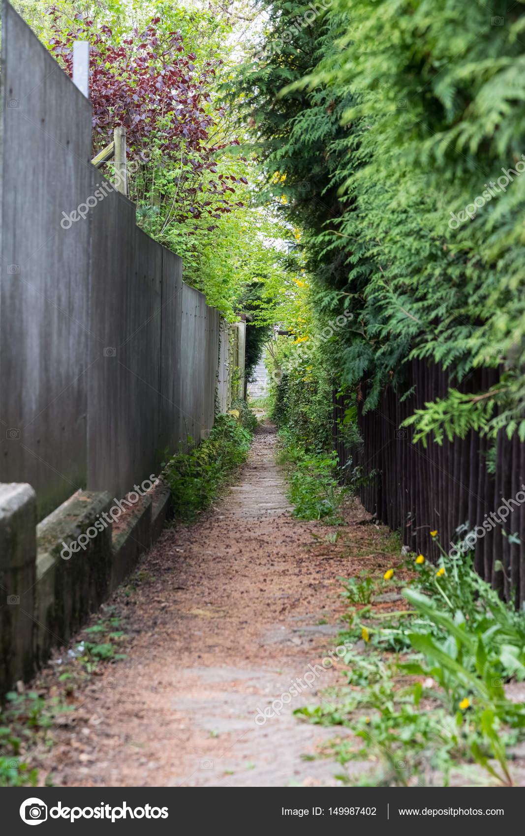 Busche Allex Hinterhof Haus Wohn Pfad Bewachsenen Grunen Lus
