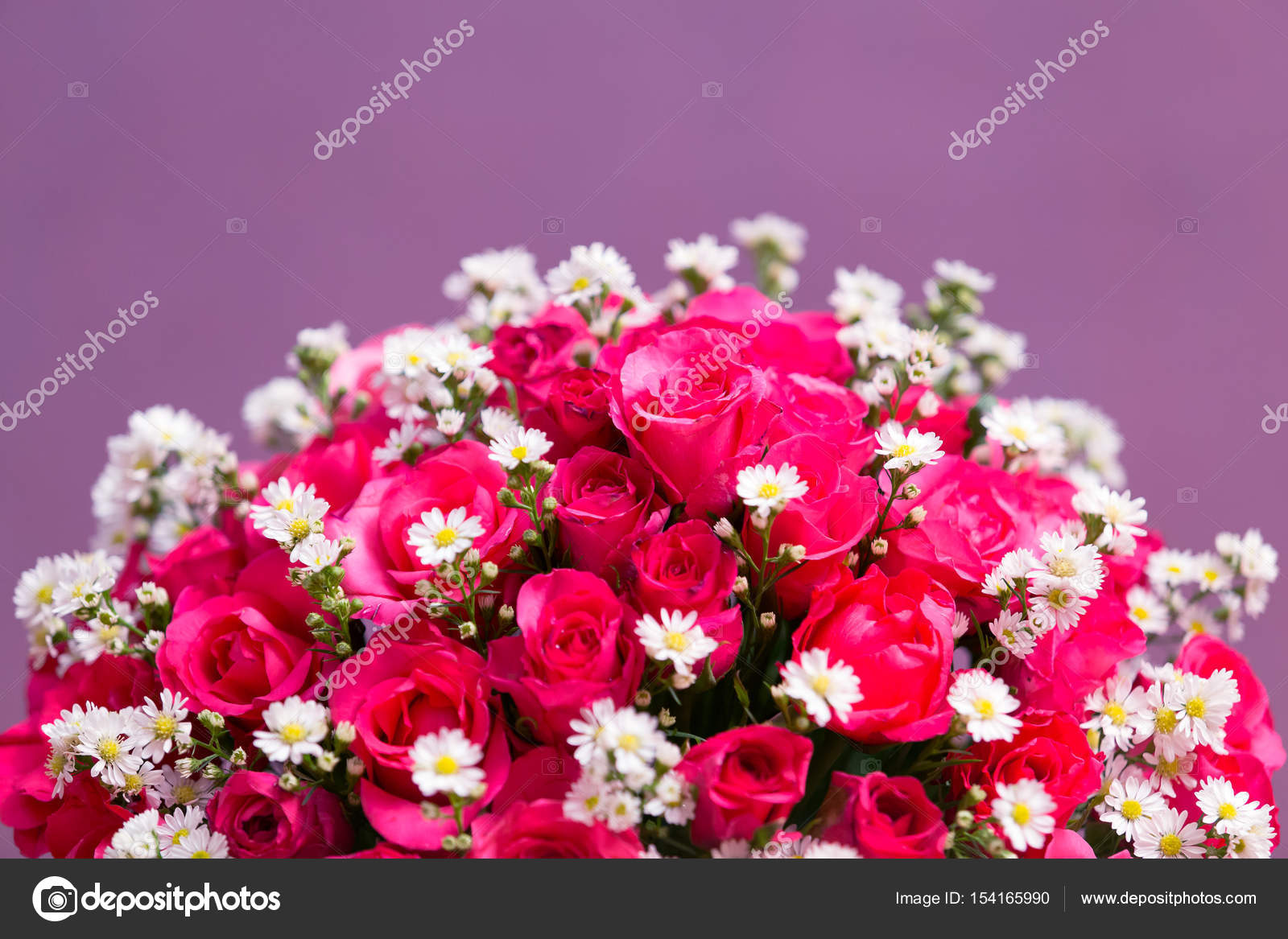 Beautiful roses and little daisy flowers background stock photo beautiful roses and little daisy flowers background photo by ltdedigos izmirmasajfo