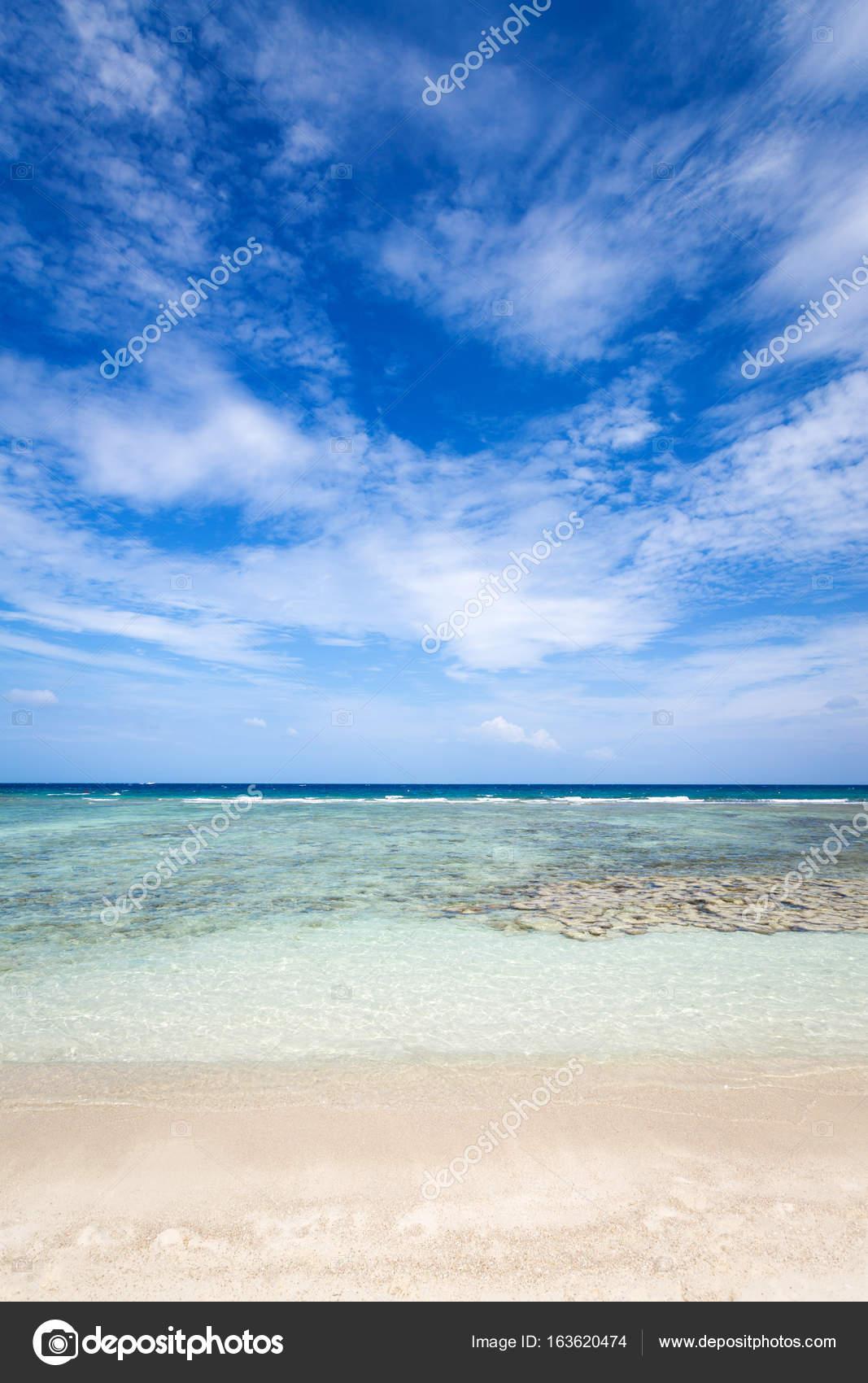 Schone Korallen Der Nahe Von Den Tropischen Strand Freedom Beach