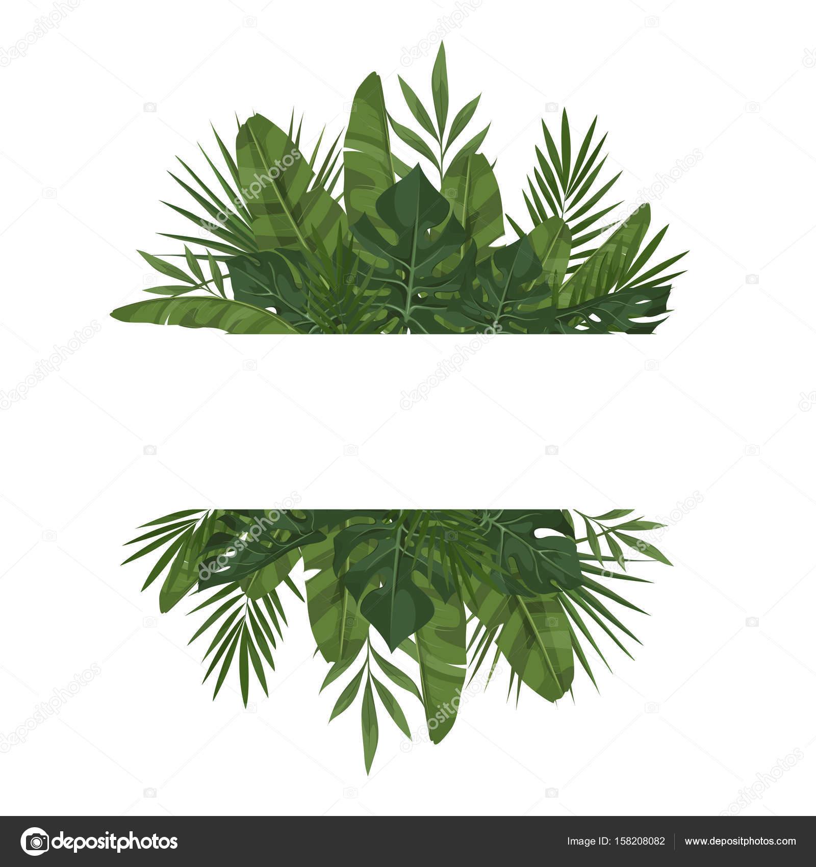 plantilla con hojas tropicales — Archivo Imágenes Vectoriales ...