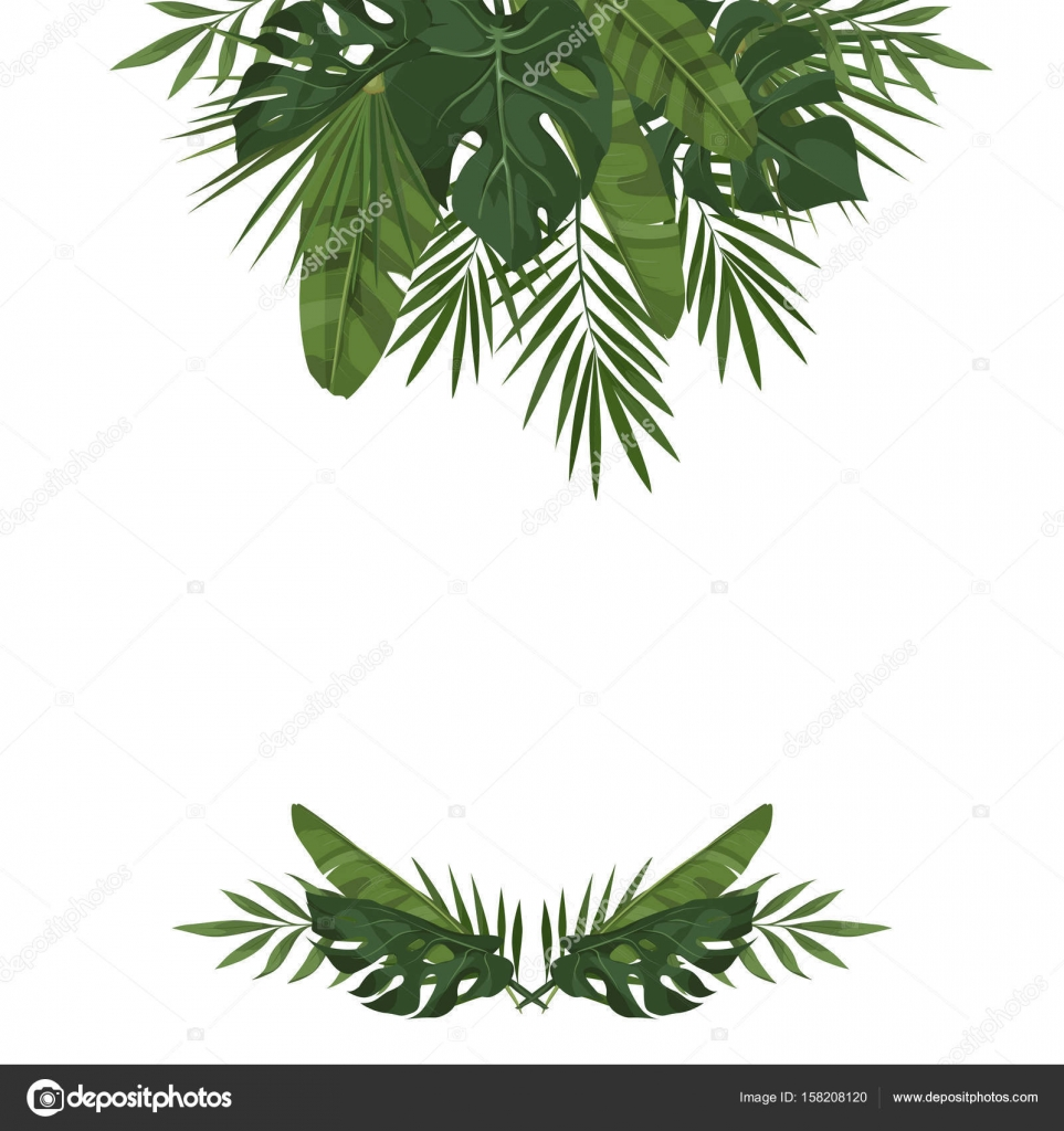 plantilla de vectores con hojas tropicales — Archivo Imágenes ...