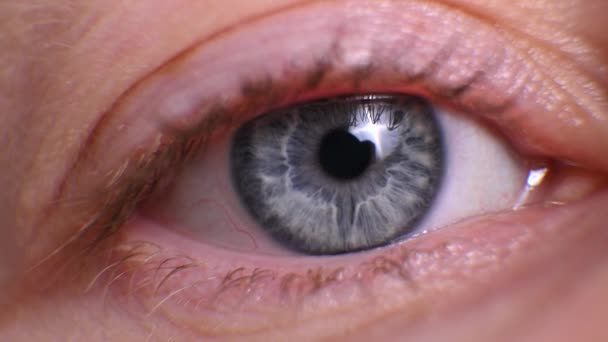 lidské oko zblízka. makro ženské oko