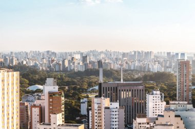 Elevated View of Ibirapuera Park in Sao Paulo, Brazil (Brasil)