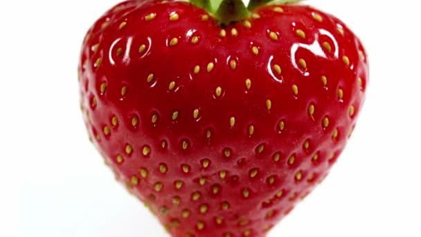 Jahody, fragaria vesca, ovoce proti bílé pozadí, reálném čase 4k, Moving image