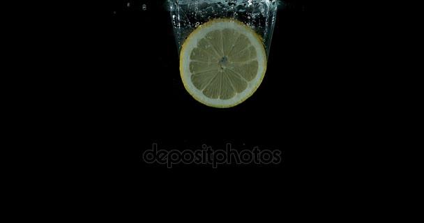 Yellow Lemons, citrus limonum, Fruits falling into Water against White Background, Slow Motion 4K