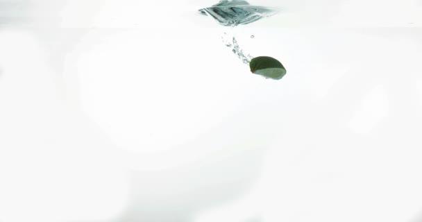 Žluté citrony, citrus limonum a zelené citrony, citrus aurantifolia, ovoce pádu do vody proti bílé pozadí, Slow Motion 4k