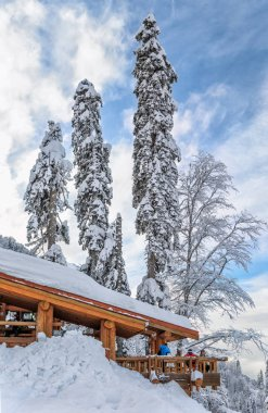 Cafe Sugrob at winter vertical scenic landscape