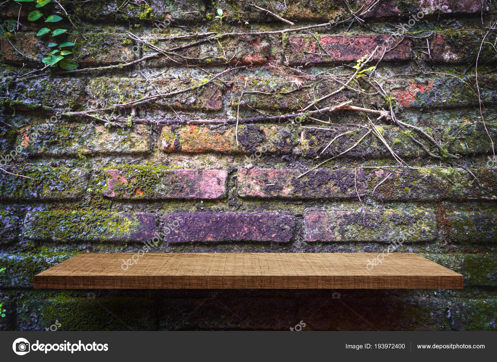 Bakstenen Muur Tuin : Lege schappen product display tuin bakstenen muur achtergrond