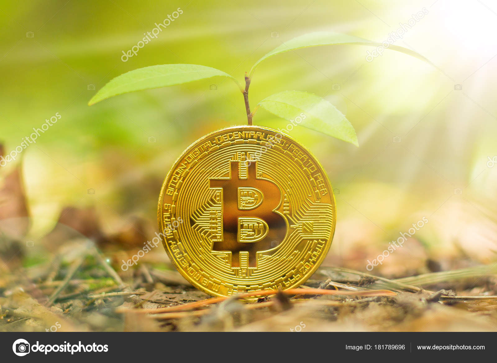 where can i buy sprouts cryptocurrency