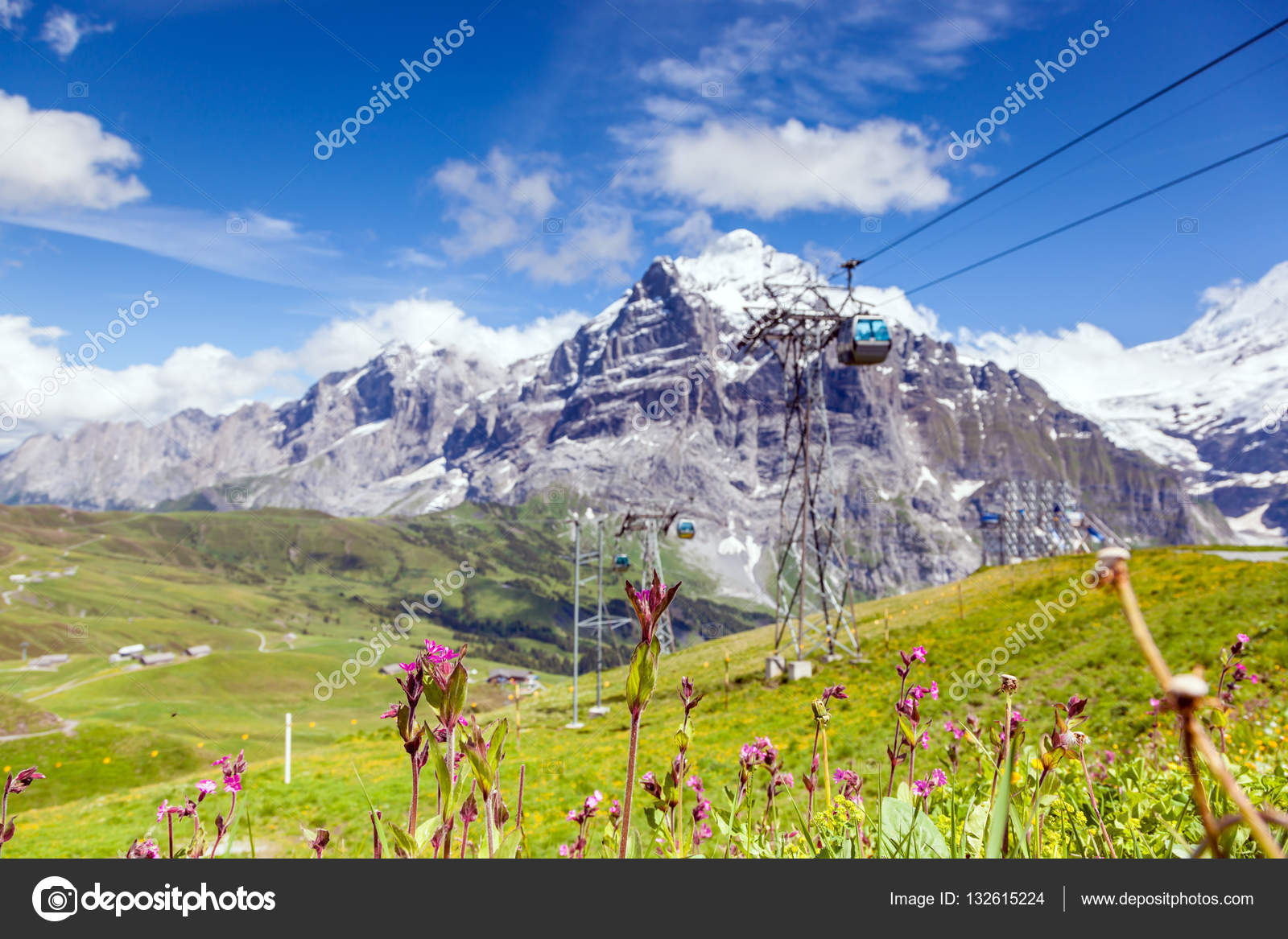 Beautiful Mountain Landscape With Flowers In Summer Time