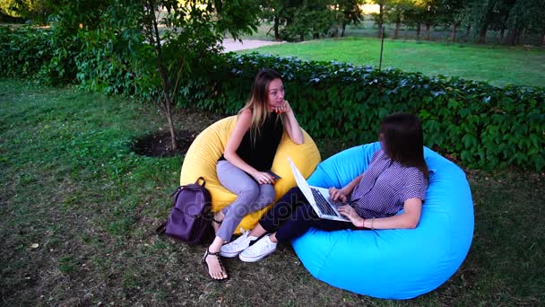 Two Girlfriends Choose Place to Spend Leisure Time, Look For Offers on Internet Using Laptop and Tablet, Sit in Soft Chairs in Park in Daytime.