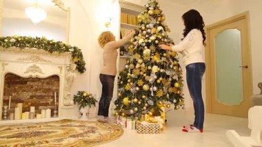 https://st3.depositphotos.com/8810948/16225/v/380/depositphotos_162251246-stockvideo-native-zusters-der-minne-kerstboom.jpg