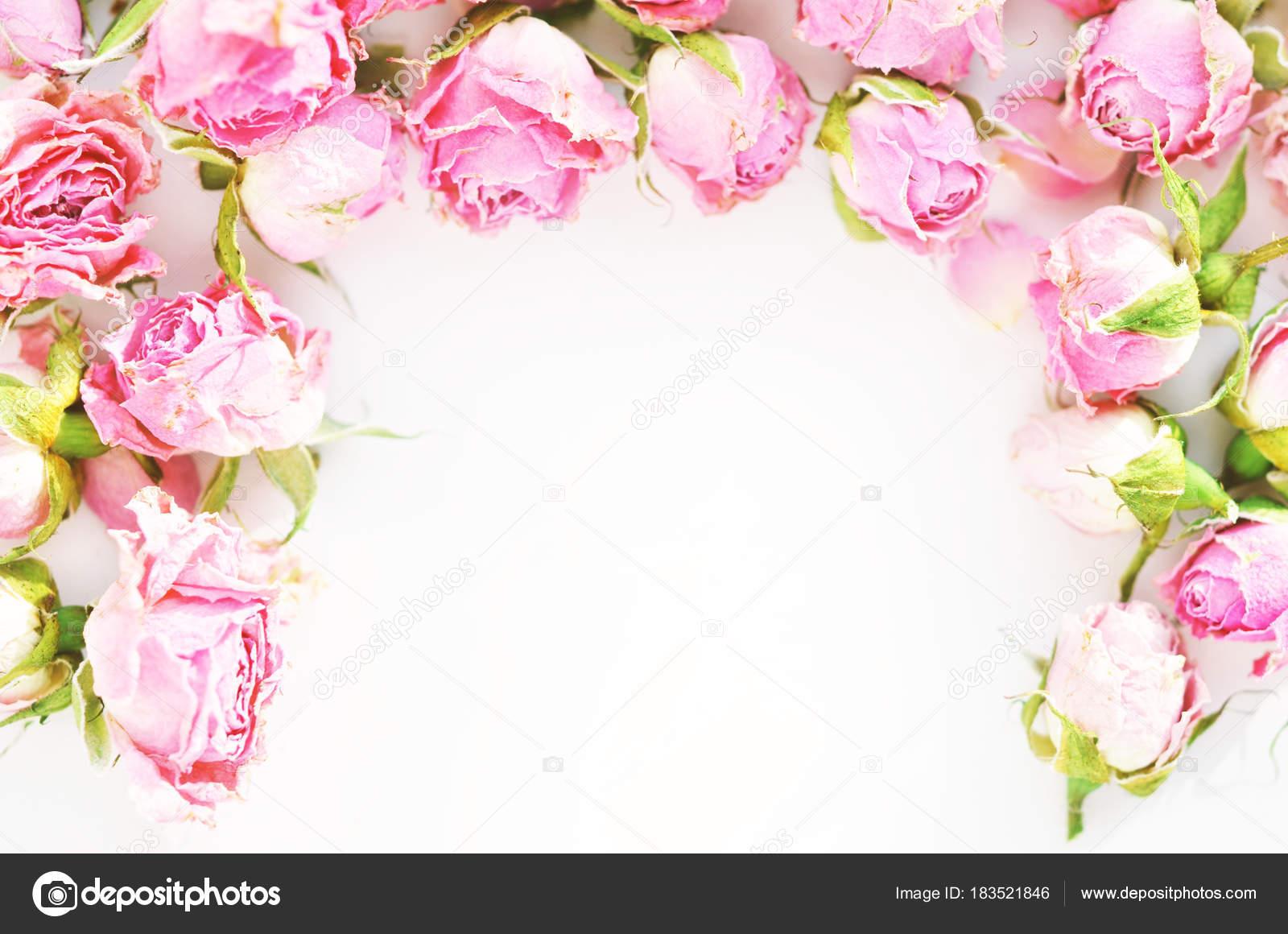 Flores Lilas Con Rosas Sobre Fondo: Composición Flores Marco Flores