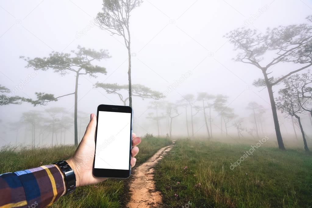 Hand in hipster shirt holding blank smartphone with forest and f