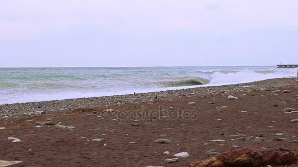 tengeri hullámok fröccsen a parton.