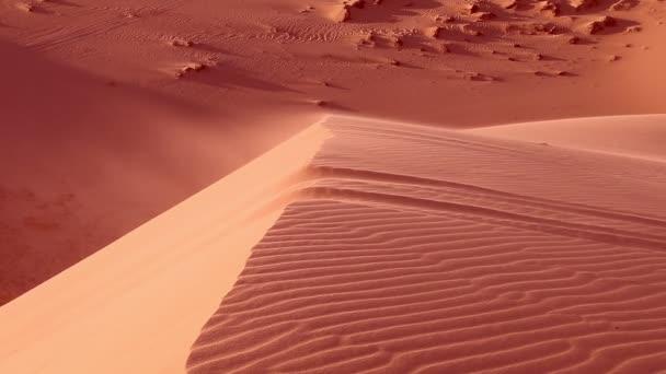 Vörös homok közelről és szemetes zsákot legyek