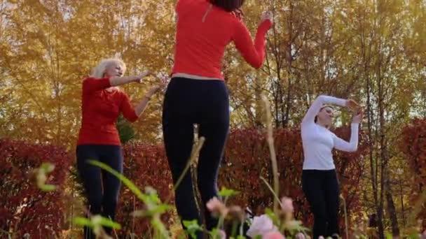Alacsony látószögű kilátás sportos nők táncolnak együtt a parkban