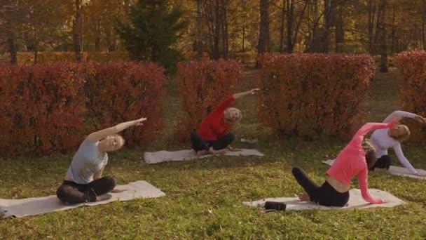 A nők nyújtózkodnak és jógáznak a parkban