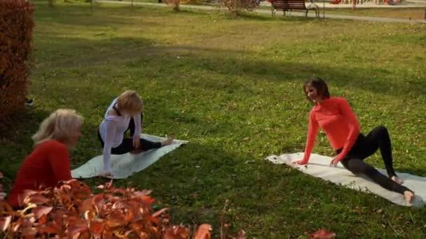Egy csapat boldog nő nevetett edzés közben a parkban