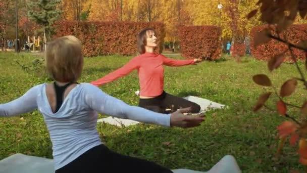 Sportos, fitnesz edzést végző nők az őszi parkban