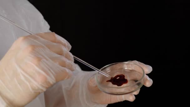Cropped shot of scientist smearing blood sample in petri dish