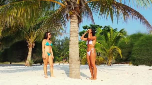Két fiatal lány barát bikiniben áll a homokos tengerparton a pálmafa alatt, napoznak és beszélgetnek. Gyönyörű nők pihennek trópusi üdülőhelyen