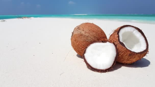White coconuts on shoreline. Summer journey on Bali.