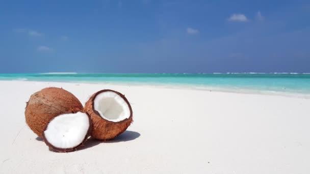 Ripe coconuts on the beach. Tropical paradise in Bora Bora, French Polynesia.