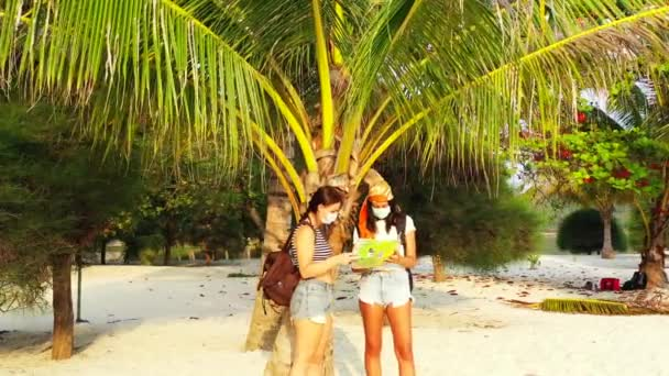view of girls standing in masks on the sandy beach near a palm tree, talking about something and reading a map